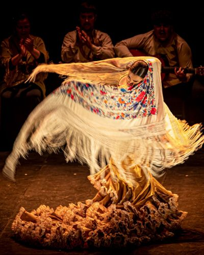 mia-flamenco-4