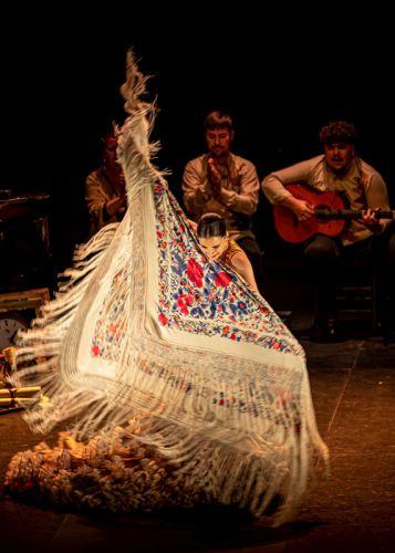 mia-flamenco-5