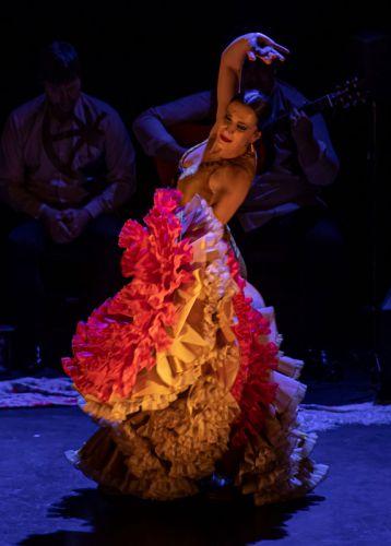 mia-flamenco-8